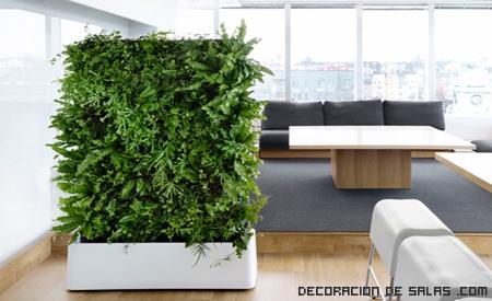 salones ecológicos