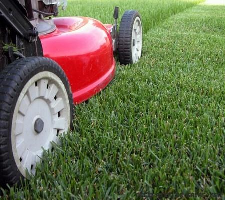 Maquinaria para hierba