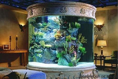 acuario grande redondo