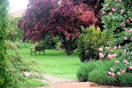 jardin clasico