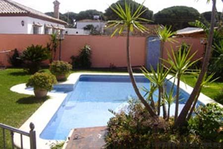 piscina con palmeras