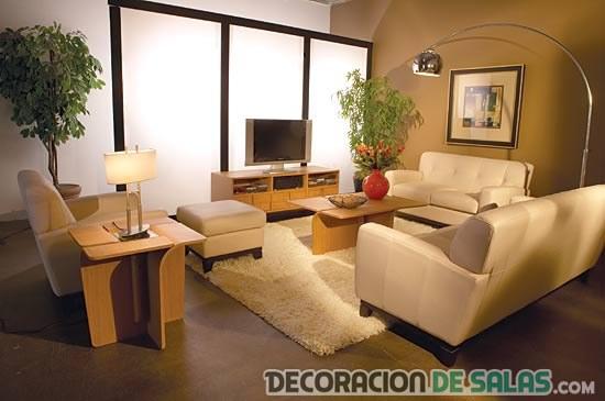 sofás modernos en sala pequeña