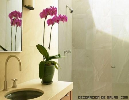 Elimina las manchas de agua y cal