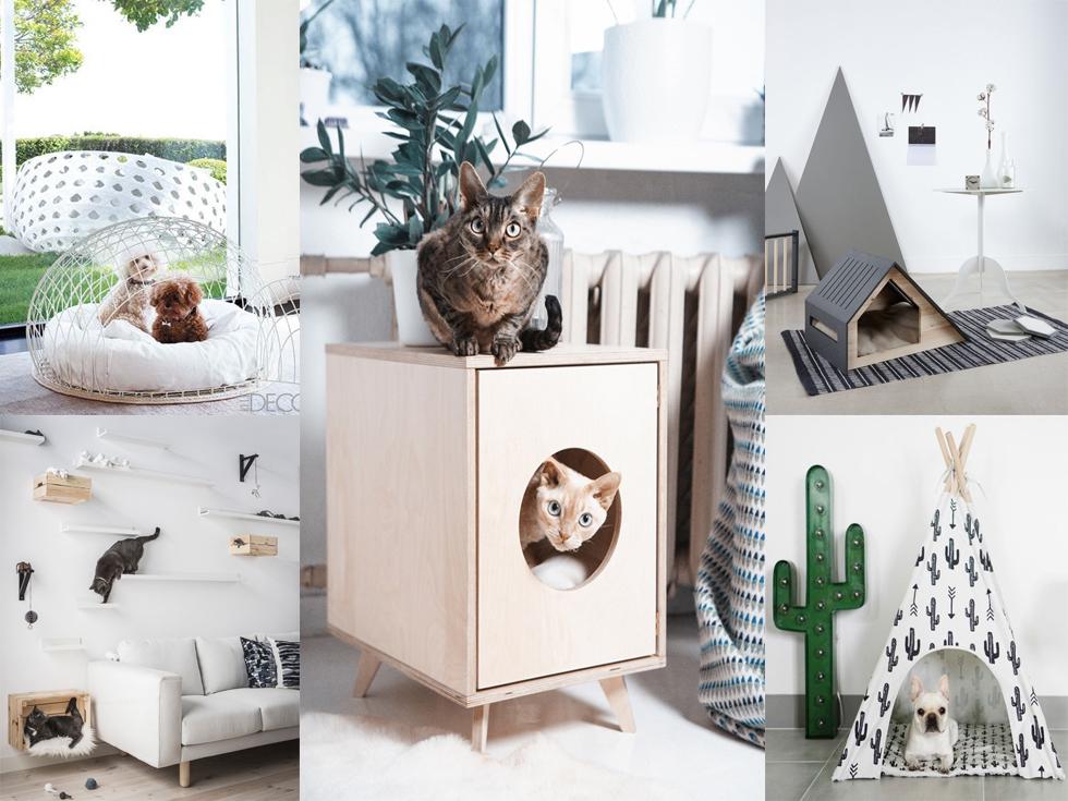 Mascotas en la decoración del hogar