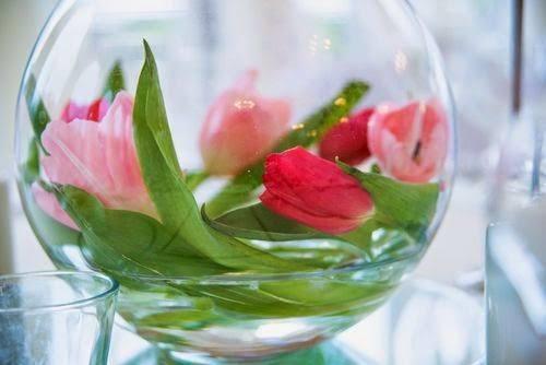 pecera con flores y plantas