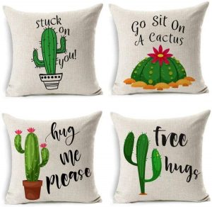 cojines cactus