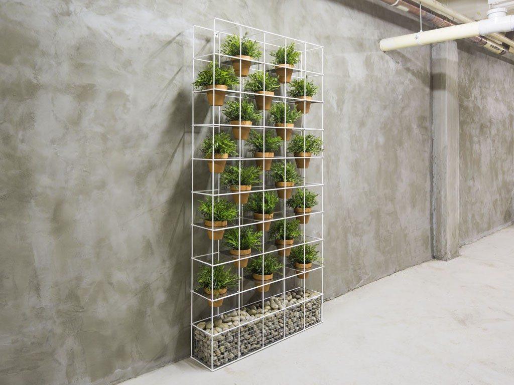 estantería con plantas