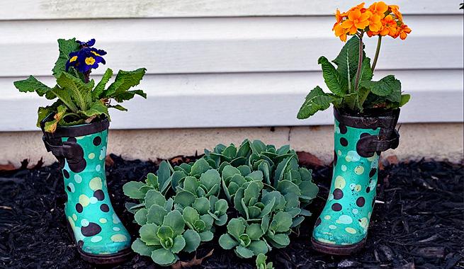 plantas en botas