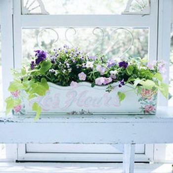 macetero con flores en la ventana