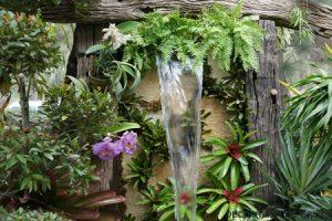Un jardín tropical