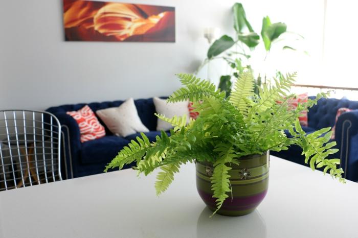 centro de mesa planta