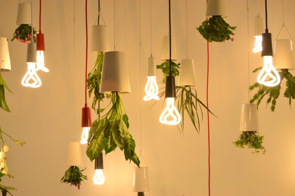 plantas y lamparas originales