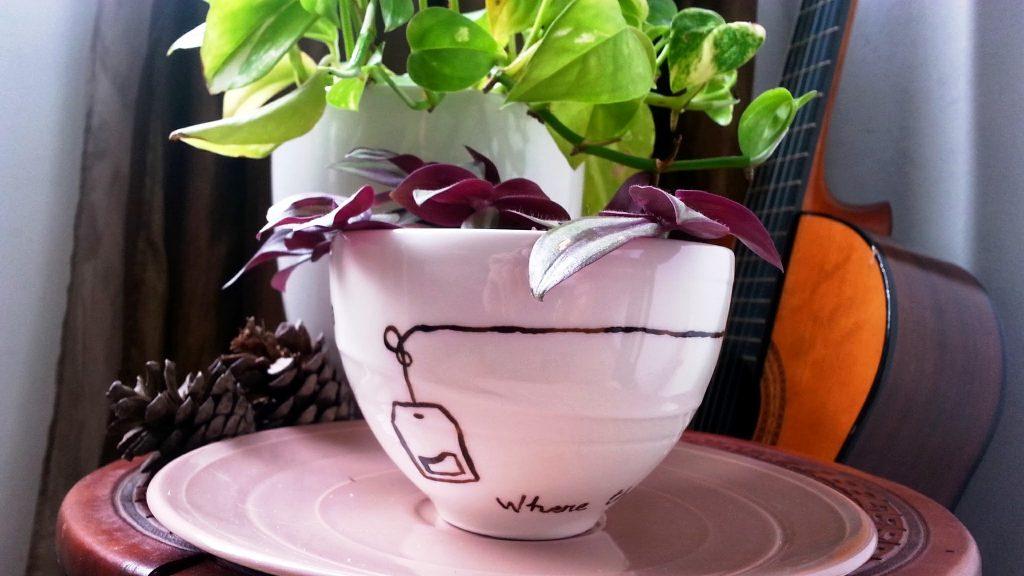 taza de te con plantas